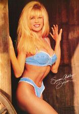 LOT OF 2 POSTERS : SUSAN ASHLEY DIXON - SEXY  FEMALE MODEL    #3048    RC22 J