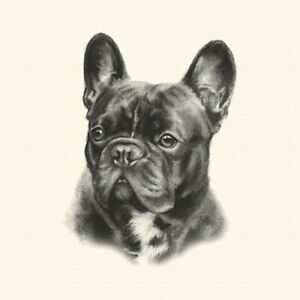 Dog Show Ring Number Clip Pin Breed - French Bulldog Frenchie (Black)