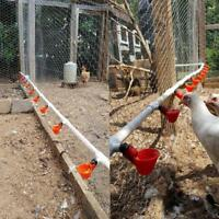 Bird Coop Feed Poultry Automatic Drink Water Cups Chicken Fowl Drinker Household