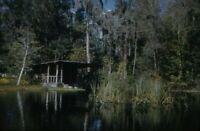 Lot of 12 Cypress Gardens Florida FL 1959 Kodachrome 50s Vintage 35mm Slides