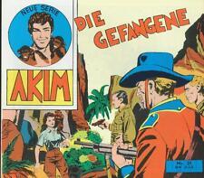 Akim - Neue Serie 31 (Z1), Hethke