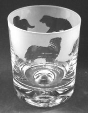 More details for bernese mountain dog frieze boxed 30cl glass whisky tumbler