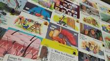 Group Of 33 Disney Info Cards Learning Animals Holidays Organ Vintage PCs K26703