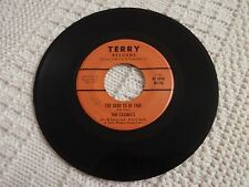 THE CASINO'S  TOO GOOD TO BE TRUE/THAT'S THE WAY  TERRY 116