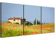 Red Floral Green and Blue Tuscan Hills Canvas Pictures of Italy