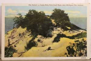 Indiana IN Michigan City Dunes State Park Sand Dune Summit Postcard Old Vintage
