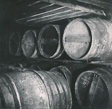 COGNAC c. 1950-60 - Chai de Fûts de Cognac  Charente - DIV 6979