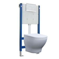 Concealed Cistern Toilet Carrier Wall Hung Dual Flush 6L Metal White Bathroom