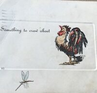 Postcard 1907 Rooster And Mosquitoes Drawn Vintage Postcard P45