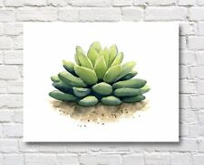 Succulent Art Print Contemporary 11 x 14 Gardening Watercolor