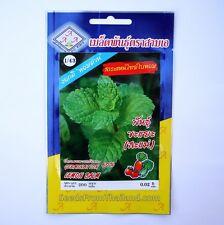 Thai Lemon Balm seeds - 1 Packet (200 Seeds) - UK Seller