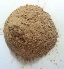 1 oz. Tongkat Ali Powder (Eurycoma longifolia) Wildharvested Indonesia