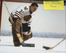Denis DeJordy CHICAGO BLACKHAWKS  1961-1970 #30 ORIGINAL 8 X 10 PHOTO 1