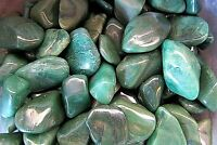 Buddstone Verdite Qty 1 Tumbled Stone 20-25mm Healing Crystal by Cisco Traders
