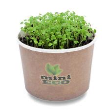 3000 Brunnenkresse Bio Samen Set Kräuter Sprossen Pflanzset Keimsaat Kresse Saat