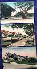 Lot of 3, PASADENA, CAL M. Rieder Hand Colored Post Card '05-15 ORANGE GROVE AVE