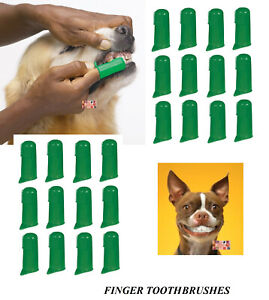 24 PET DOG CAT Finger Pro DENTAL Teeth RUBBER TOOTH BRUSH ORAL CARE Toothbrushes