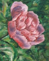 Peony Flower Floral Original Oil Painting Hand-Painted Artwork Wall Art O/C COA