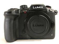 Panasonic LUMIX GH5s 10.2MP Mirrorless Camera - Black (Body Only)