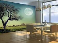 Nature  Photo Wallpaper Wall Mural DECOR Paper Poster Free Paste