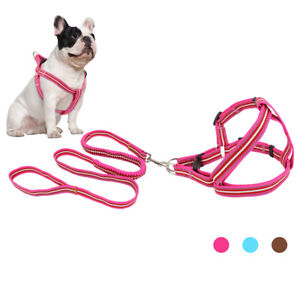 Reflective Nylon Step In Dog Vest Harness and Bungee Leash for Small Large Dogs