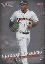 2016 Delmarva Shorebirds Natanael Delgado RC Rookie Orioles Minor