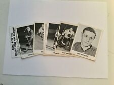 Chicago Black Hawks hockey rare Coke team set 1965