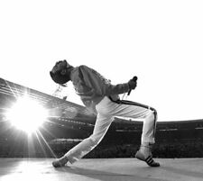 Queen Band 8X10 Photo Freddie Mercury Brian May Roger Taylor John Deacon