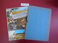F 7.660 LIBRO STRUTTURE ED EVENTI DELL'ECONOMIA ALESSANDRINA 1981