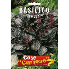 Semi Seeds Basilico Rosso Red Basil semence semilla samen zaad シード семена