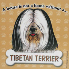 Tibetan Terrier Magnet - House Is Not A Home Wht/Blk
