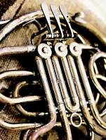 PHOTOGRAPHY INSTRUMENT BRASS FRENCH HORN TUBES PIPES ART POSTER PRINT CC6479