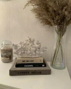 Luxury Large Decorative Reisin White Coral Home Decoration Ornament Decor