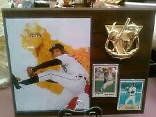 Detroit Tigers Mark Fidrych Sports Plaque
