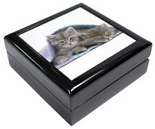 Kittens Under Blanket Keepsake/Jewellery Box Christmas Gift, AC-205JB