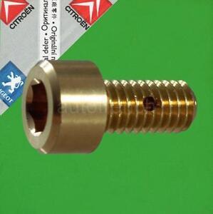 NEW GENUINE Peugeot Citroen Brass Bleed Screw 130629
