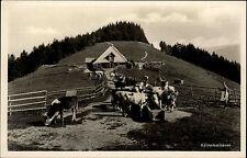 Sirnitz Schwarzwald Ansichtskarte ~1930 Landschaftspartie an der Kälbelescheuer
