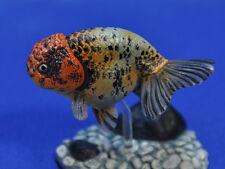 "yujin capsule gold fish part 1 Rescheduled Added ver "" Edp nishiki """