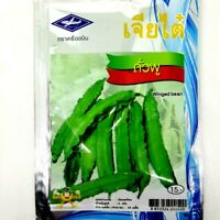 Chia Tai Thai Winged bean Seeds Vegetable Plant Organic Garden Tropical Salad