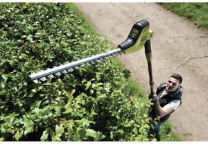 Ryobi 450W 45cm Blade Electric Pole Hedge Trimmer (RPT4545M)