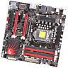 ASUS Motherboard Maximus III GENE, LGA 1156, Intel P55 Chipset,DDR3 Memory