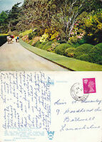 1972 INVEREWE GARDENS POOLEWE ROSS & CROMARTY SCOTLAND COLOUR POSTCARD