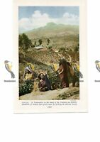 Talawakele, Picking Tea, Ceylon (Sri Lanka), Book Illustration, c1920