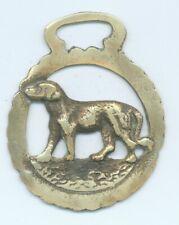 DOG  horse brass   (5974)