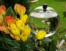 je 5 x mundgeblasene Bewässerungskugel Ø 9,5 cm/ Durstkugel - Wasserspender Glas