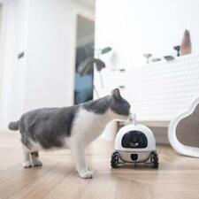 Rockibot.ai | Rocki Pet Companion Robot