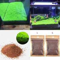 1Pcs Aquarium Plant Seeds Aquatic Double Leaf Carpet Water Grass Fish Tank 2017
