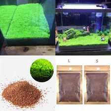 Aquarium Plant Seeds Aquatic Double Leaf Carpet Water Grass Fish Tank Decora CL