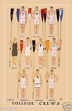 College Crews ROWING Ivy League Fine Art Print / Poster Harvard Yale Cornell