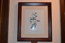 "John James Audubon ""Blacktroated Green Wood Warbler"" 18.5"" x 23.75"" x 1.5"" NICE"